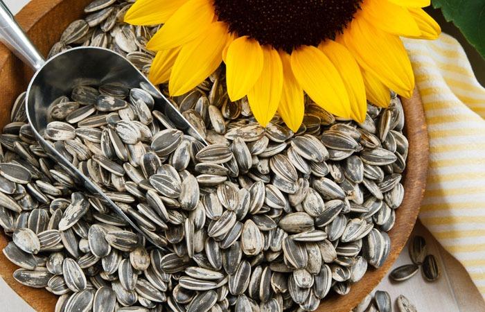 دانههای آفتابگردان؛ خواص، مواد مغذی و برخی دستورات آشپزی!