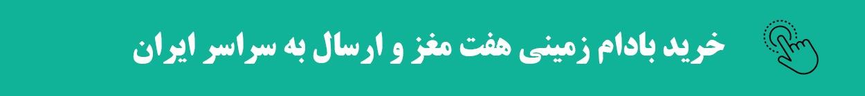خرید بادام زمینی آستانه هفت مغز-فروش بادام زمینی آستانه-ارسال بادام زمینی آستانه به سراسر ایران