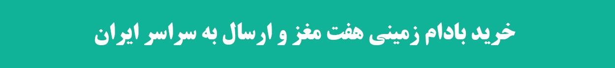 خرید بادام زمینی آستانه هفت مغز-فروش بادام زمینی آستانه-ارسال بادام زمینی به سراسر ایران