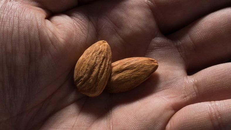 مضرات بادام درختی