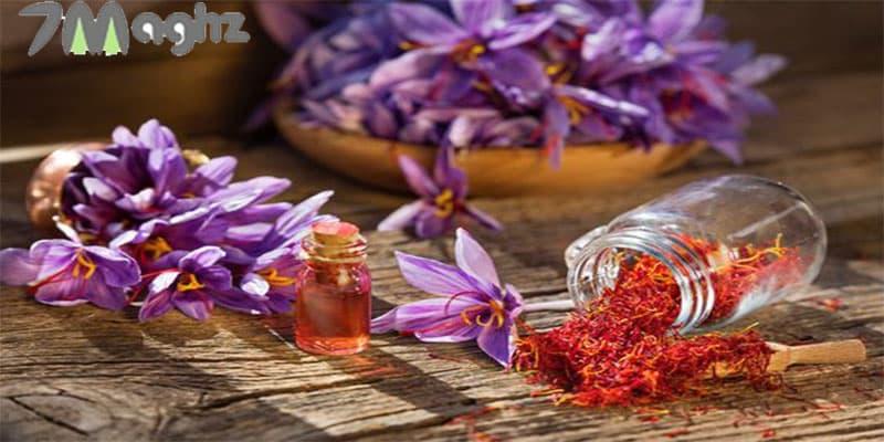 زعفران خشک کن خانگی