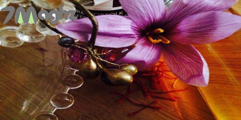 گل زعفران چه خاصیتی دارد و برای چی خوبه