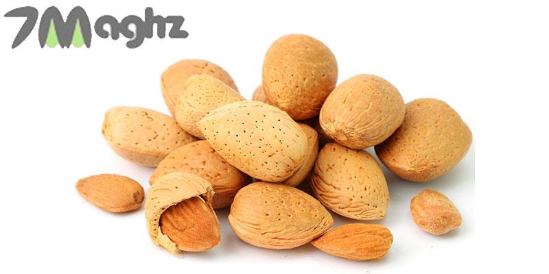 خواص بادام سنگی در طب سنتی